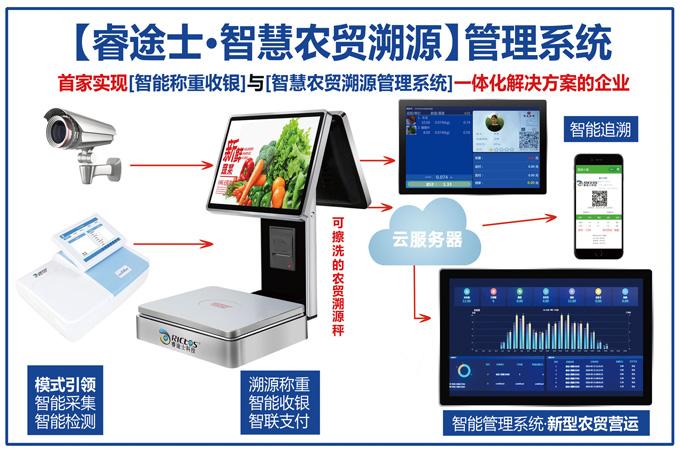 睿途士亚搏电竞app网站农贸市场架构图